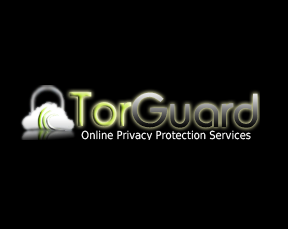 torguard-vpn-review
