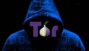 Tor-infotales-e1406810981305-300x175[1]
