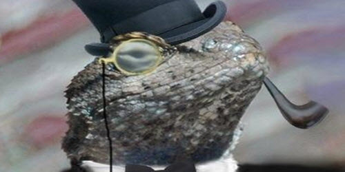 Lizard Squad responsible for DDoS attack against Blizzard
