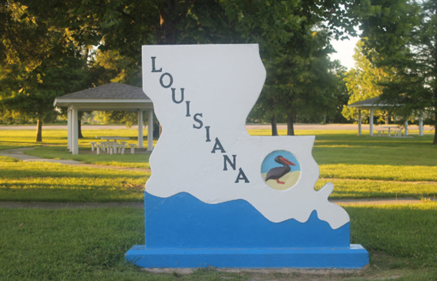 Louisiana Voter Data Leaked Online
