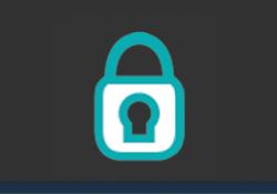 torrenting VPN